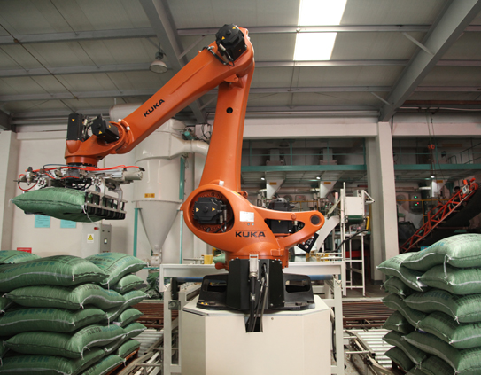 Robotic stacker crane